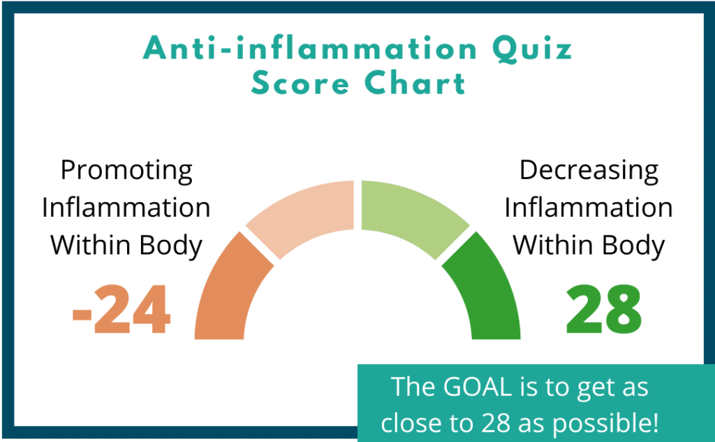 Circle graph chart showing the anti-inflammation score range from -24 to 28