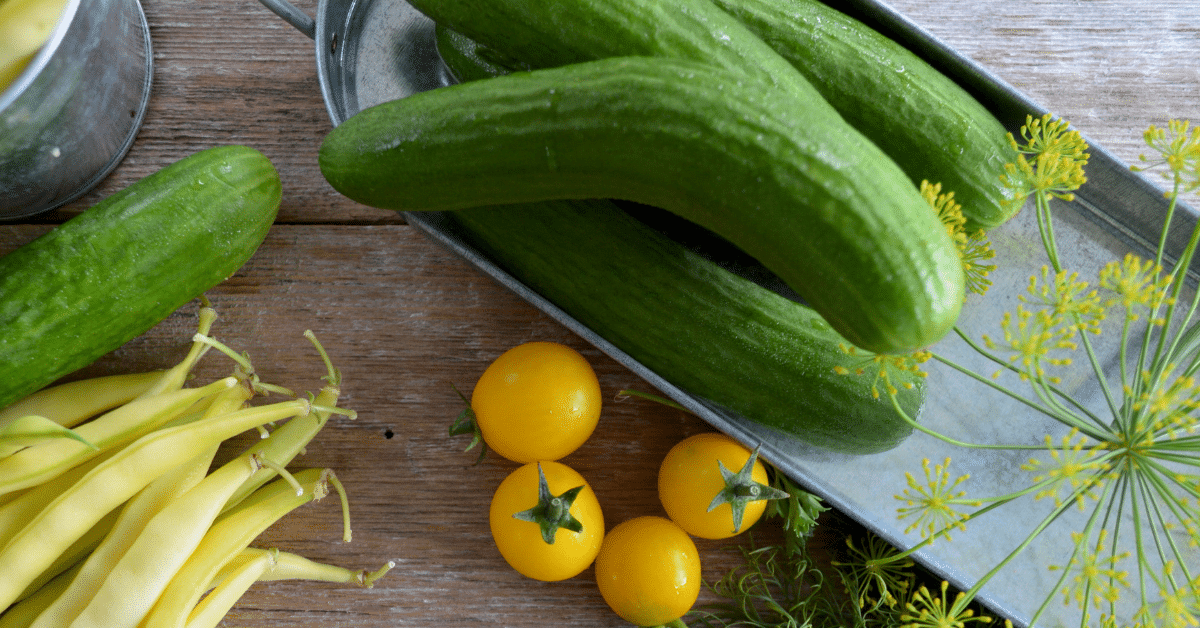zucchini-boat